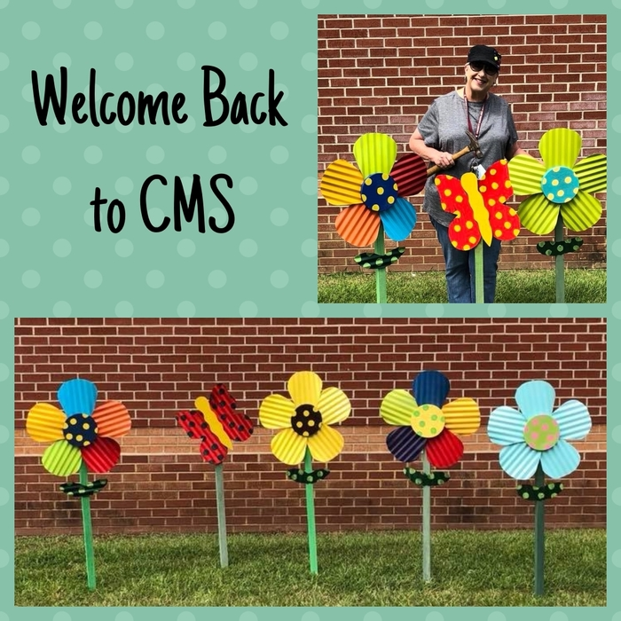 Welcome Back to CMS