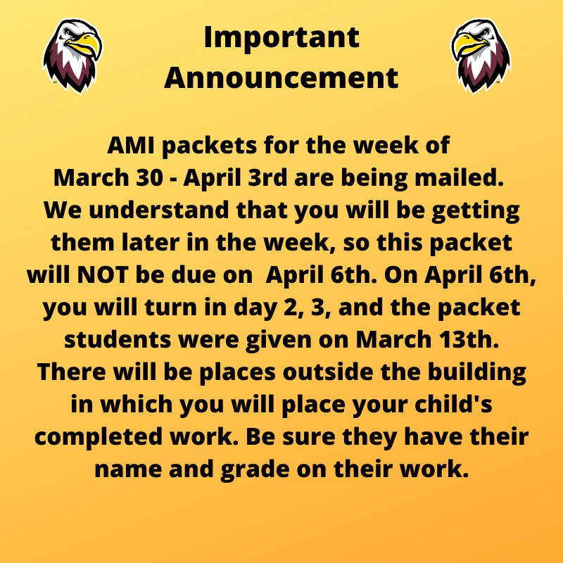 AMI Packets