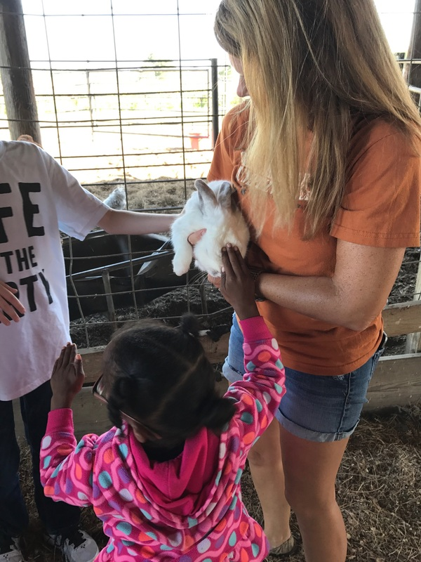 Students enjoy the petting zoo!